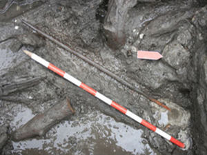 Europe's oldest Neolithic bow has been found in Spain.