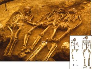 Ancient DNA from three humans buried 31,000 years ago at Dolni Vestonice in the Czech Republic has altered genetic history.