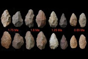 Developing lithic skills may show developing intellect.
